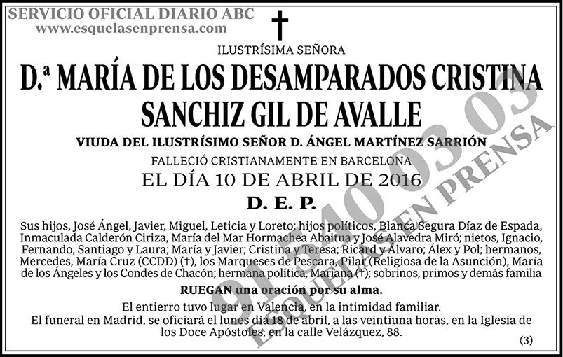María de los Desamparados Cristina Sanchiz Gil de Avalle